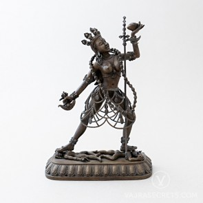 Blessed Vajrayogini (Naro Kachö) Brass Statue with Oxidised Finish, 7 inches