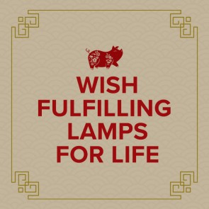 Wish Fulfilling Lamps for Life Fund