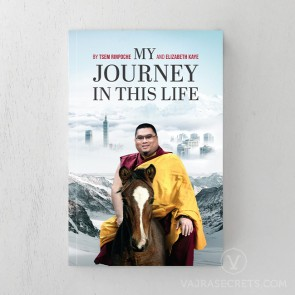 My Journey in This Life
